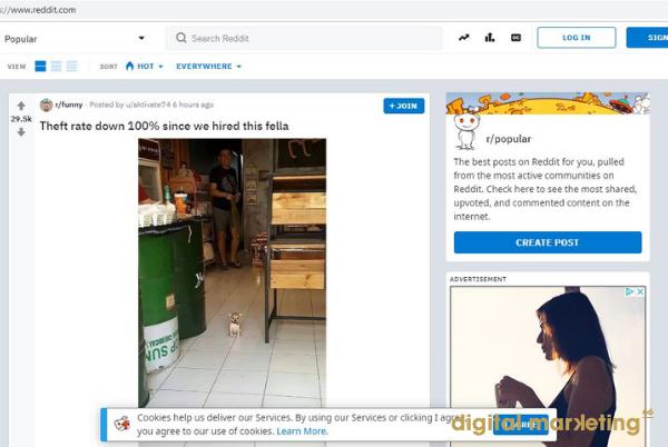 réseau-social-reddit-entreprise